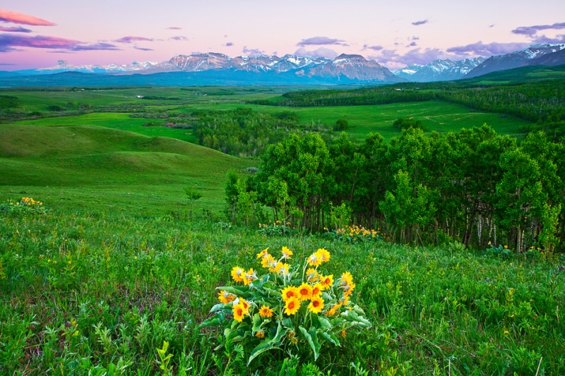 Canadian Rockies, Waterton Lake National Park, View From Distant North, Dusk, Landscape