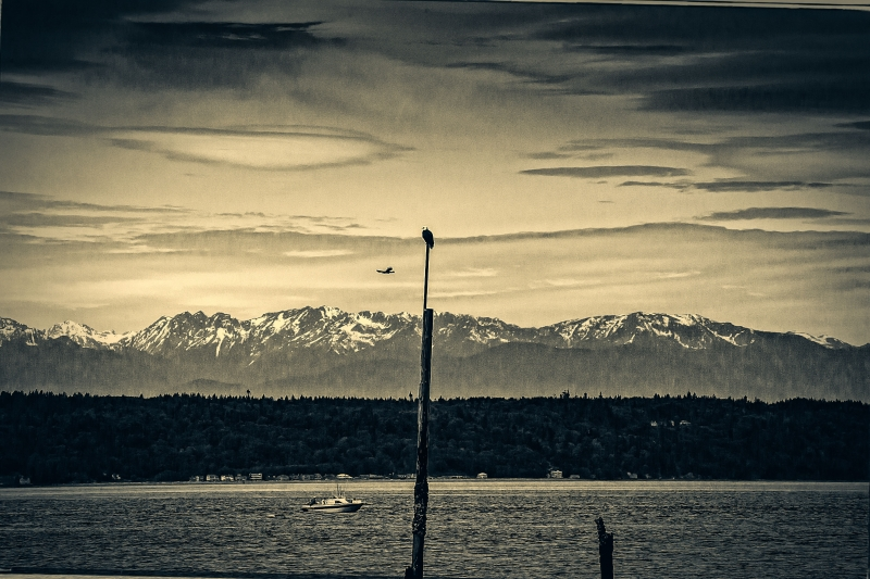 Pacific Northwest Olympic Mountain Range