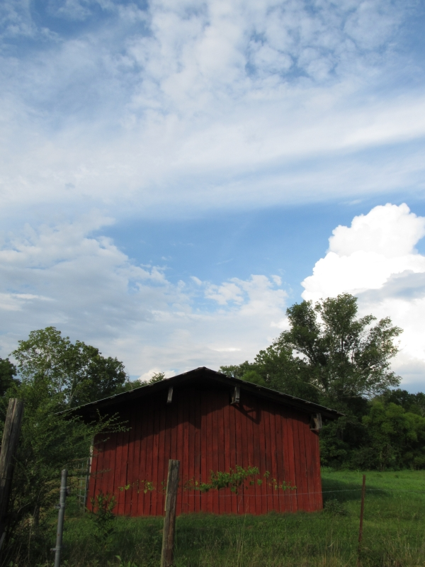 The Red Barn2