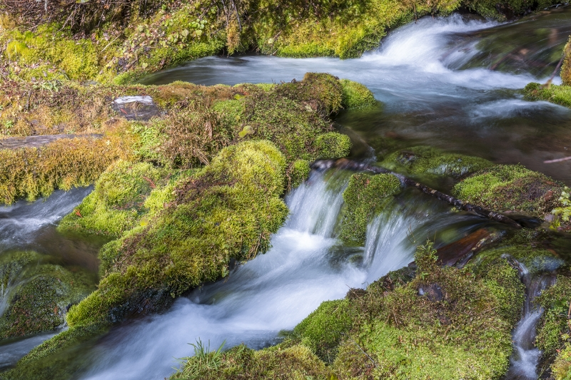 Mossy Rocks And And Rapids