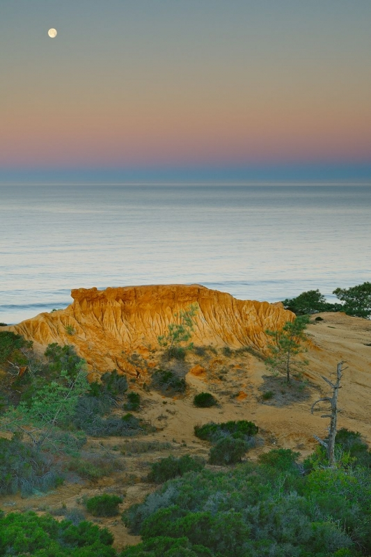 Torrey  Pines Moonset