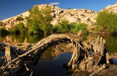 Barker Dam, Joshua Tree National Park