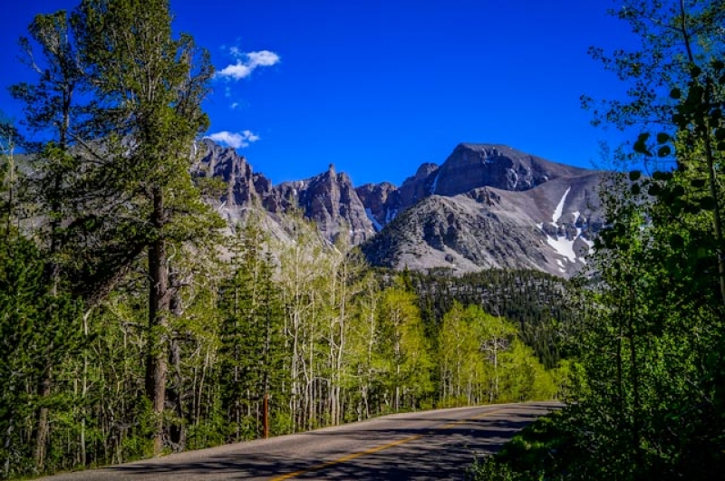 Great Basin National Park On Wheeler Peak Road
