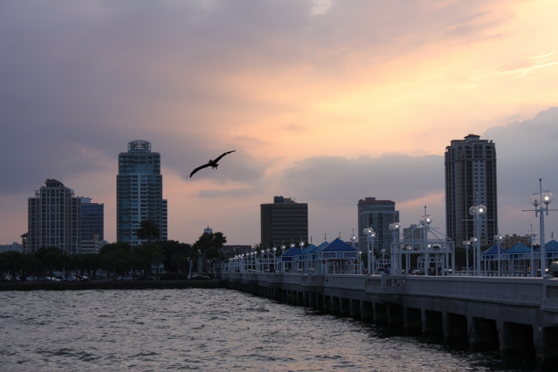 Sunset In St Pete