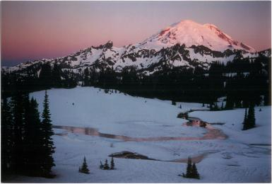 Alpine Glow On Mt. Rainier From Chinook Pass