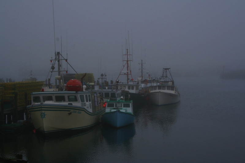 Fog In Gloucester Harbor