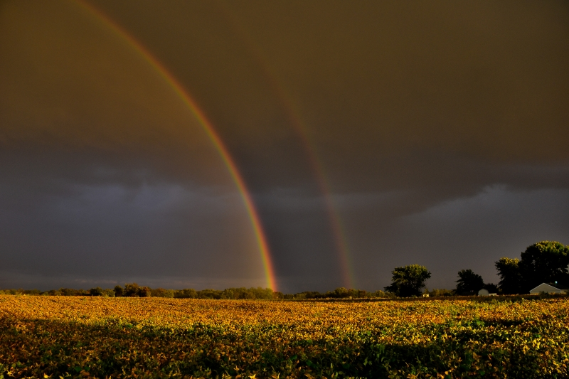 Storm, Rainbow At Sunset