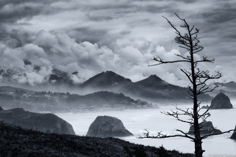Foggy Morning At Ecola Point