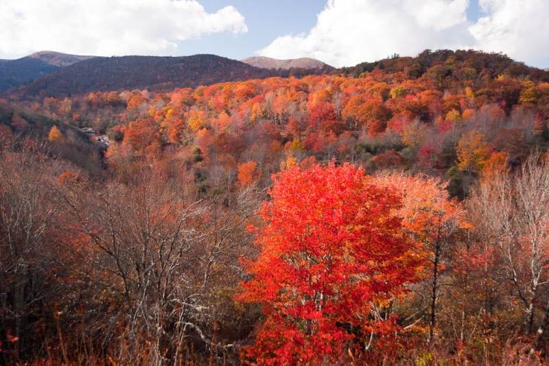 The Graveyard Fields And Second Falls