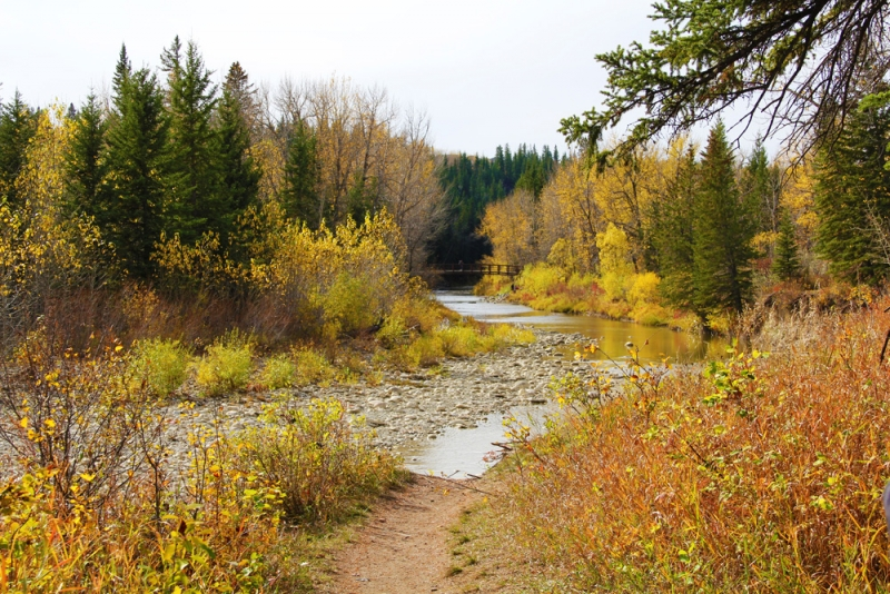 Fish Creek Provincial Park