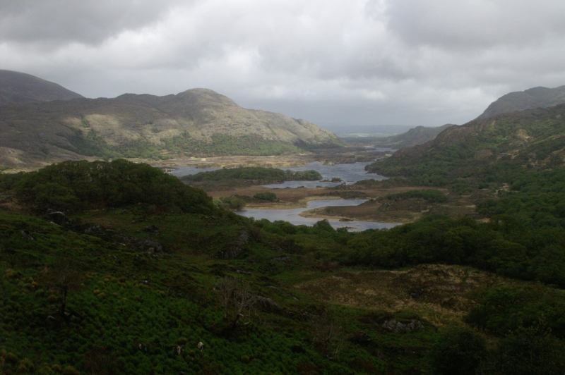 Ladies View Ring Of Kerry