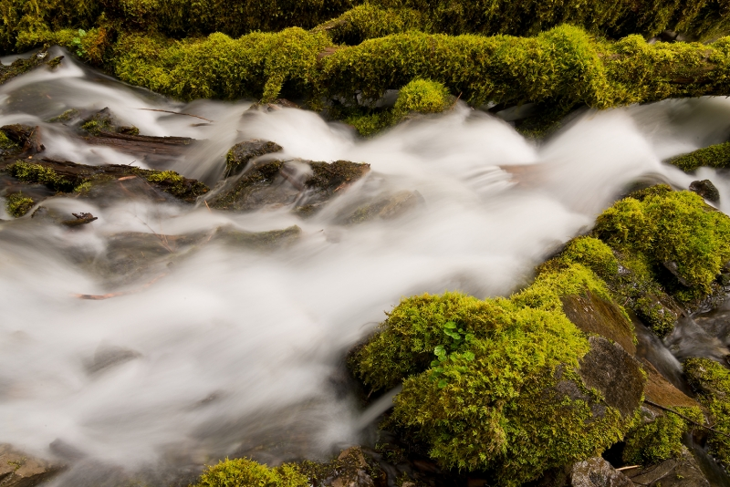 Soft Water And Mossy Rocks