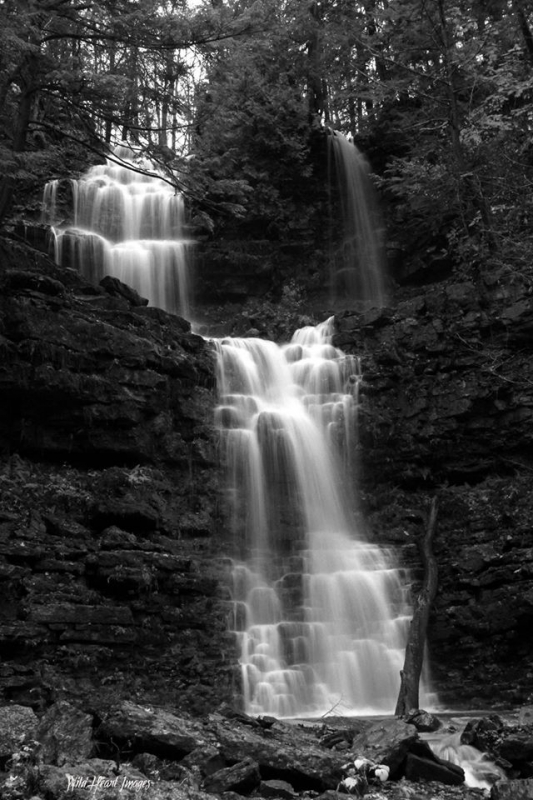 """the Other"" Chittenango Falls"