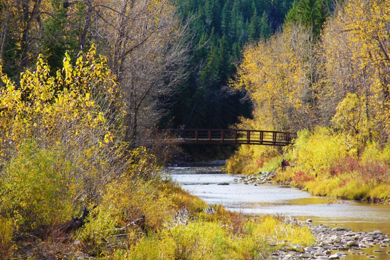 Fall At Fish Creek