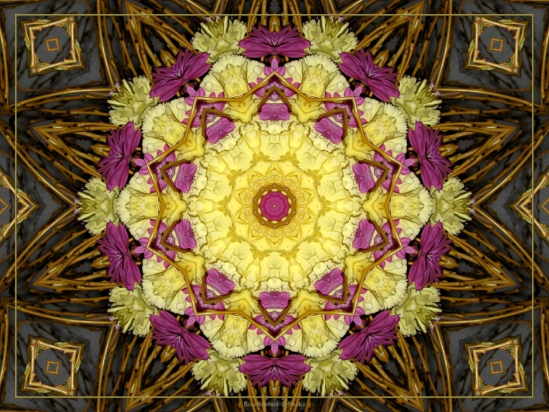 Dahlia Carnation Twigs Kaleidoscope
