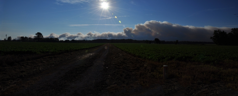 Great Dismal Swamp Fire 2011