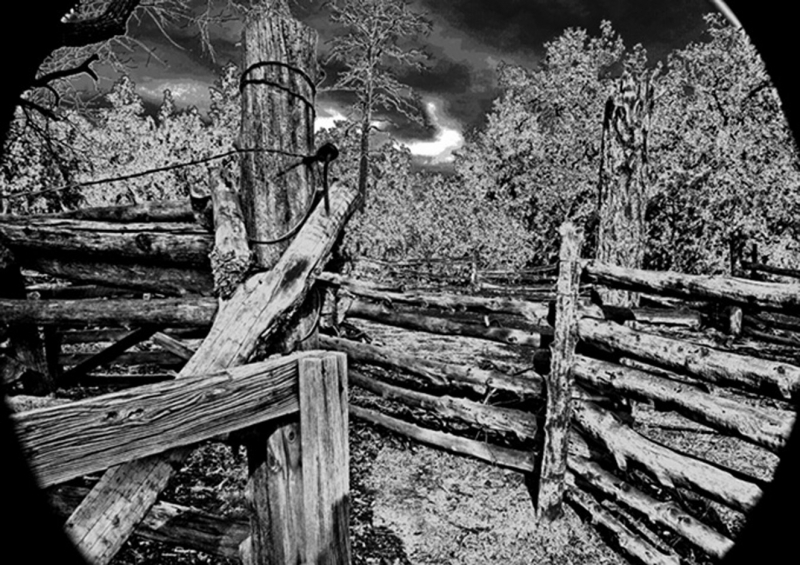 Spooky Corral
