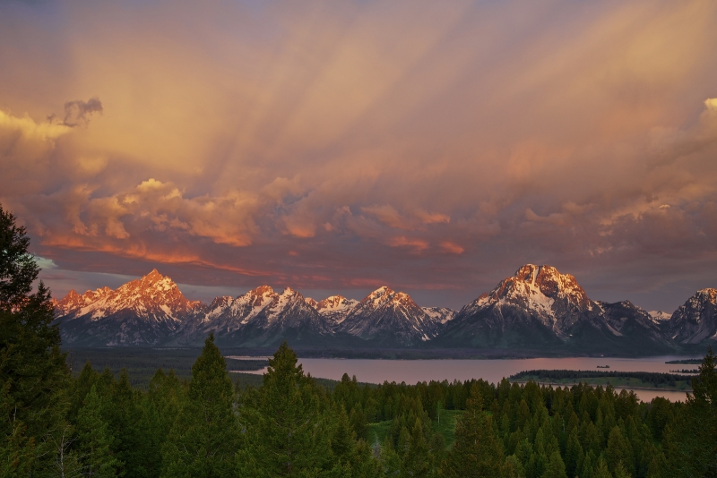 Majestic Morning Grand Teton National Park