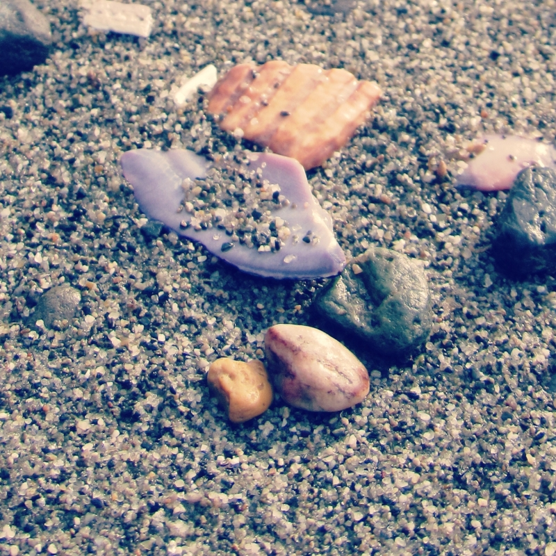 Seashells And Pebbles