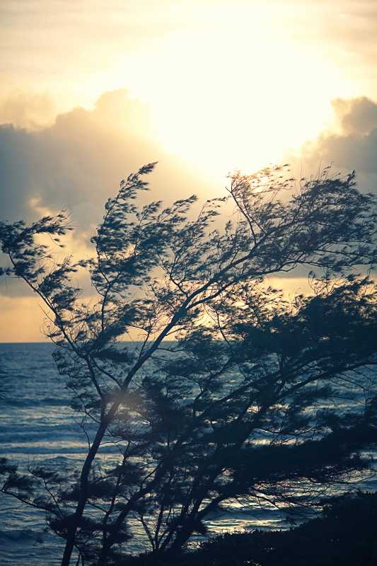 Wailua Sunrise
