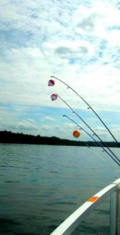 Three Fishing Poles