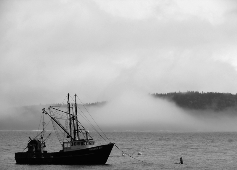 Fog Rolling In Over Bar Harbor