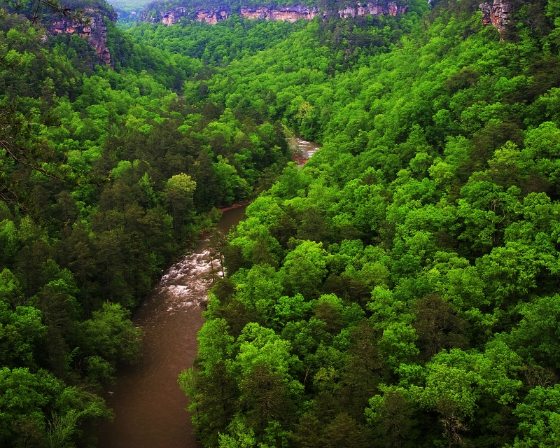 Spring In Little River Canyon