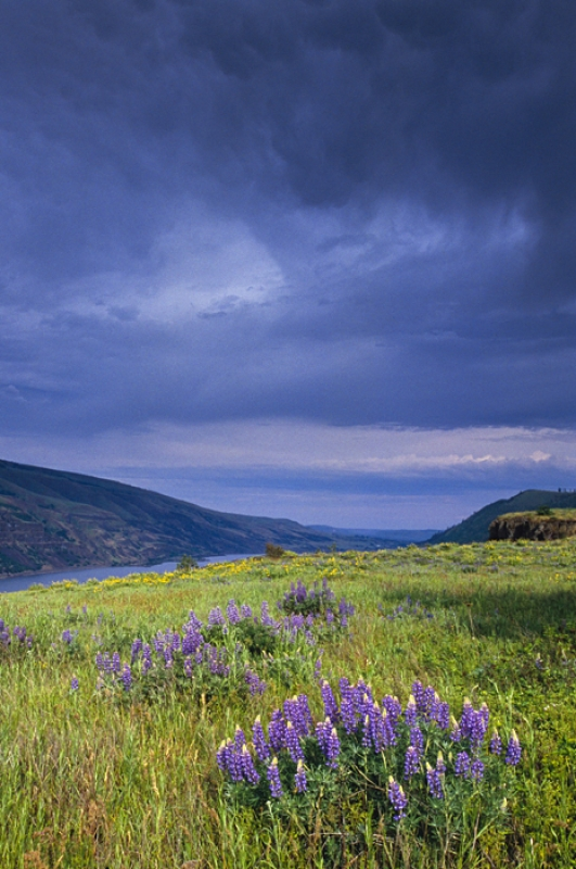 Storm Brewing Over The Rowena Plateau, Or