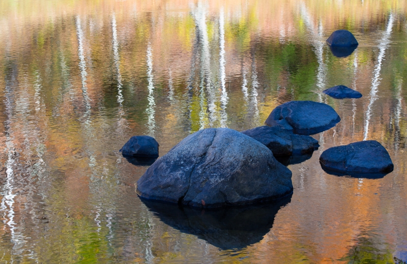 Ausable River Reflections