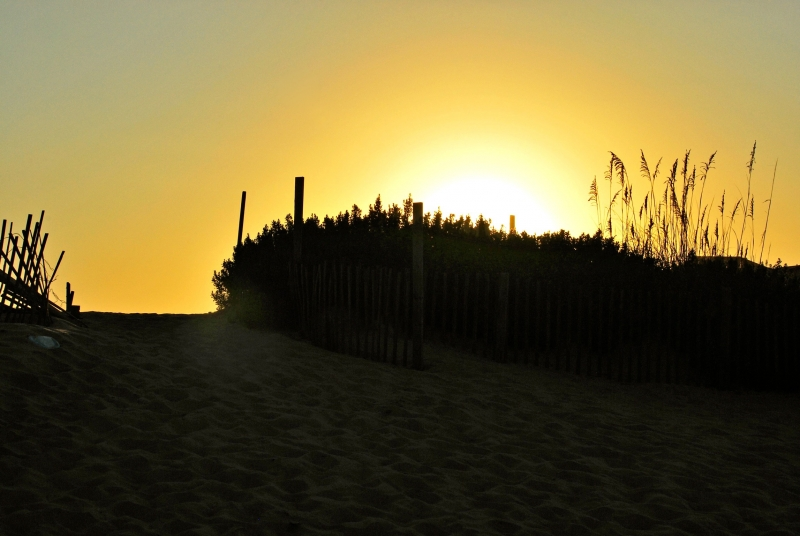 Just Over The Dune