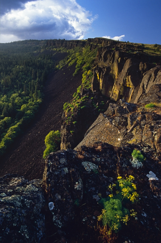 Coyote Wall, Columbia River Gorge, Wa