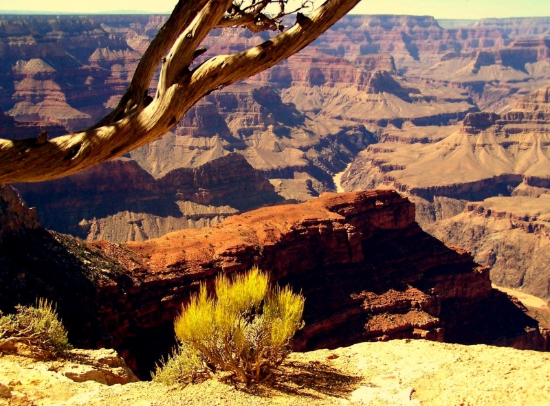 Grand Canyon In The Afternoon…