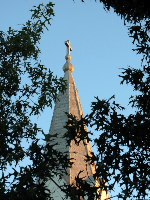 Steeple Through Trees
