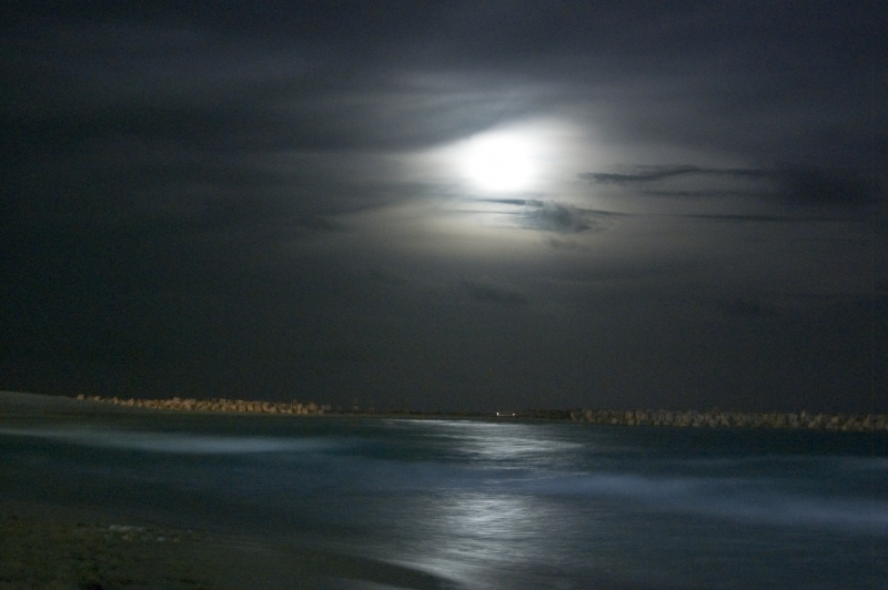 Moonrise In Cancun