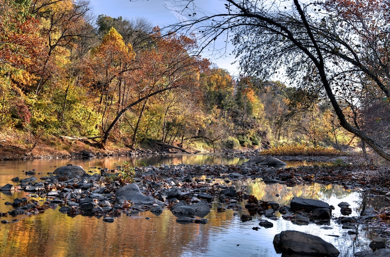 Goose Creek In Autumn