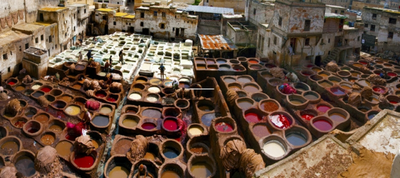 The Tannery,fez, Morocco