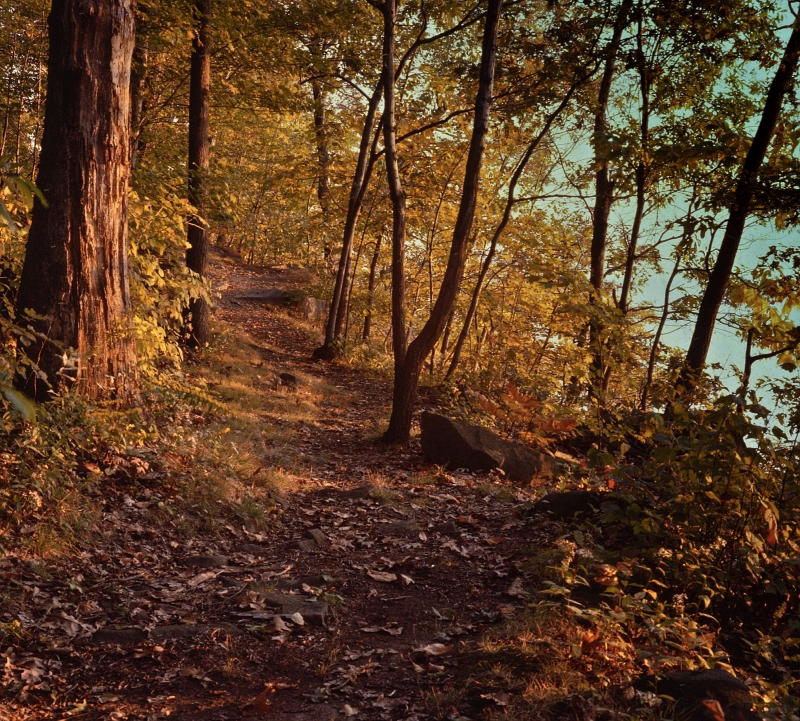 Trail Along The Hudson River
