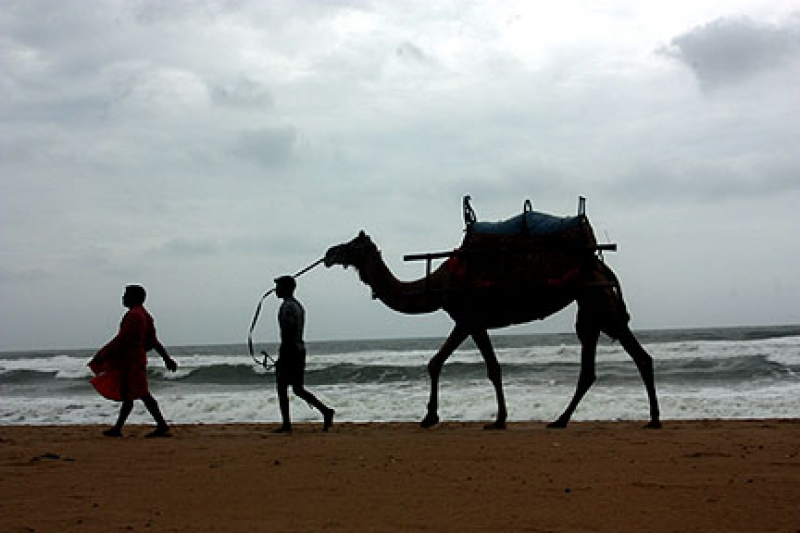 Life In Beaches Of India