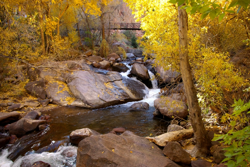Fall In Eldorado Canyon