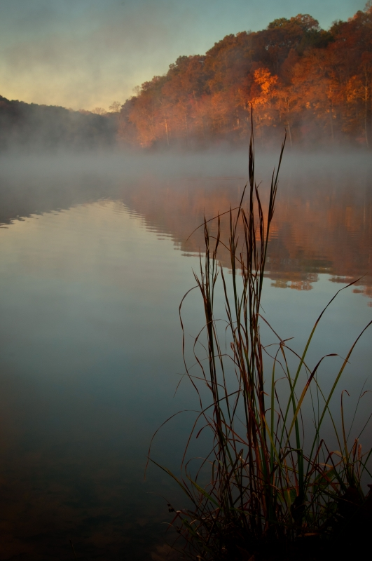 Lakeshore, Morning Fog, Autumn