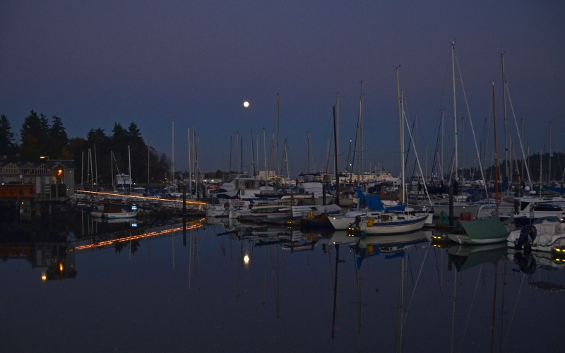 Eagle Harbor Moon