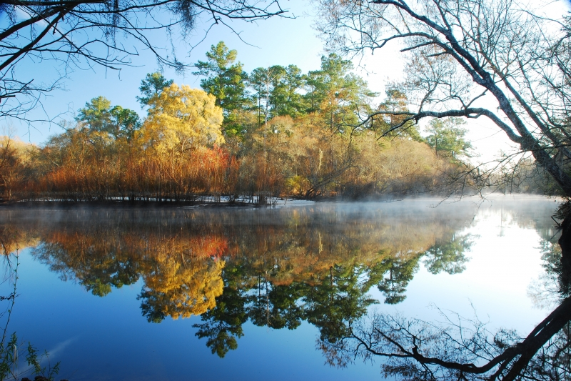 Satilla River Reflections