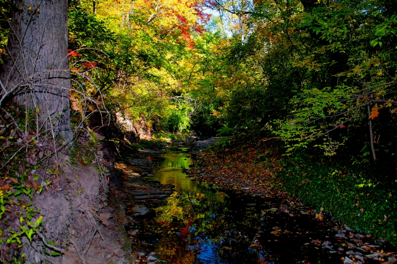 Autumn On Adena Brook
