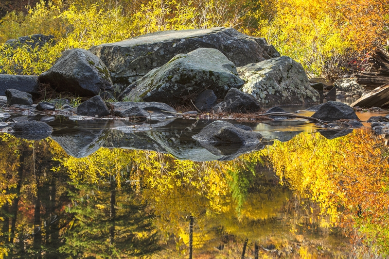 Autumn Reflections In The Wenatchee River