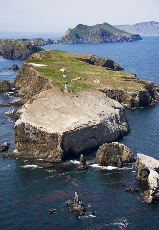 Anacapa Is. Channel Islands Natl. Park