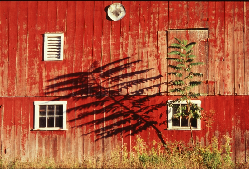 Shadow On Barn