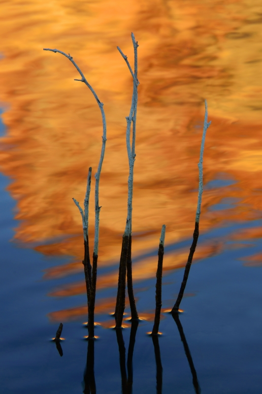 Owyhee Lake Reflection Closeup