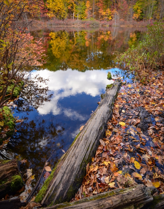 Mendon Ponds Park – Devil's Bathtub