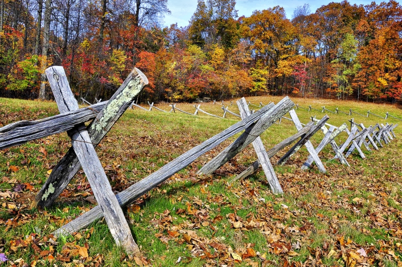 Blue Ridge Fence