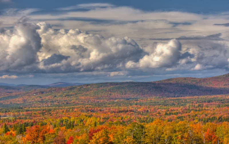 White Mountains Fall